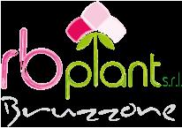 RbPlant
