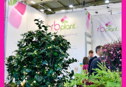 IMMAGINE Stand di RB Plant Albenga a IPM Essen 2019