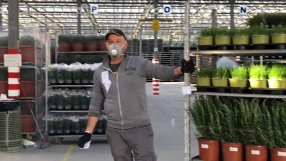 RB Plant operativi in sicurezza con consegne di fiori e piante ai clienti