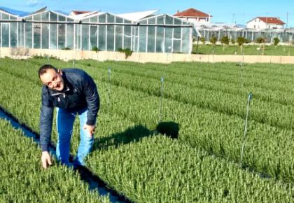 Eccezionale produzione di fiori e piante 2020 per RB Plant
