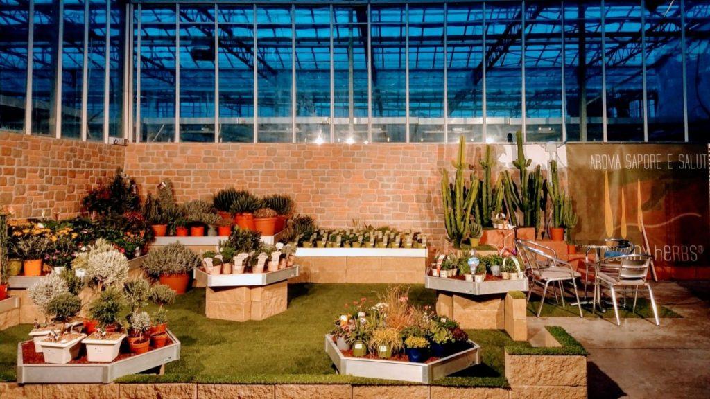 Stand virtuale di RB Plant per mostra piante fiori ed erbe aromatiche di Albenga